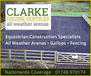 Clarke Equine Services 2020 (Warwickshire Horse)