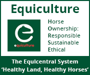 Equiculture 01 (Warwickshire Horse)