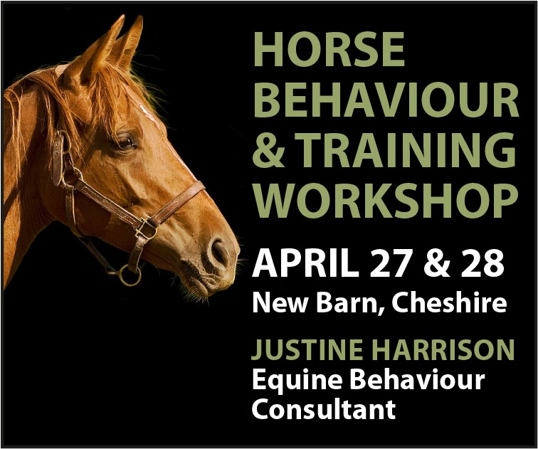 Justine Harrison Workshop April 2019 (Warwickshire Horse)