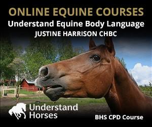 UH - Understand Equine Body Language (Warwickshire Horse)