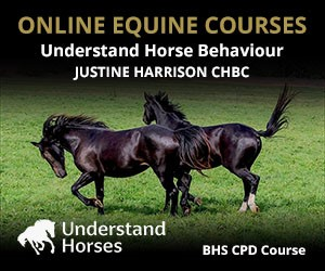 UH - Understand Horse Behaviour (Warwickshire Horse)