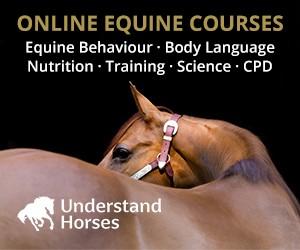 Understand Horses (Warwickshire Horse)